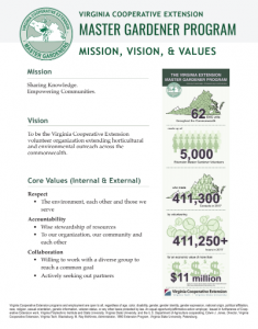 screen shot of mission vision and values pdf