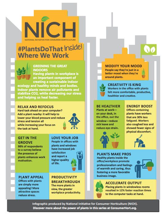 NICH infographic for plants do that where we work featuring colorful buildings with data on indoor plants